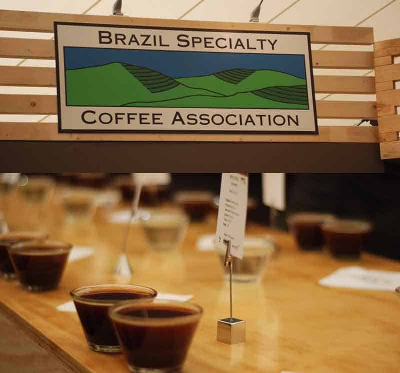 Brazil Specialty Coffee Association, BSCA