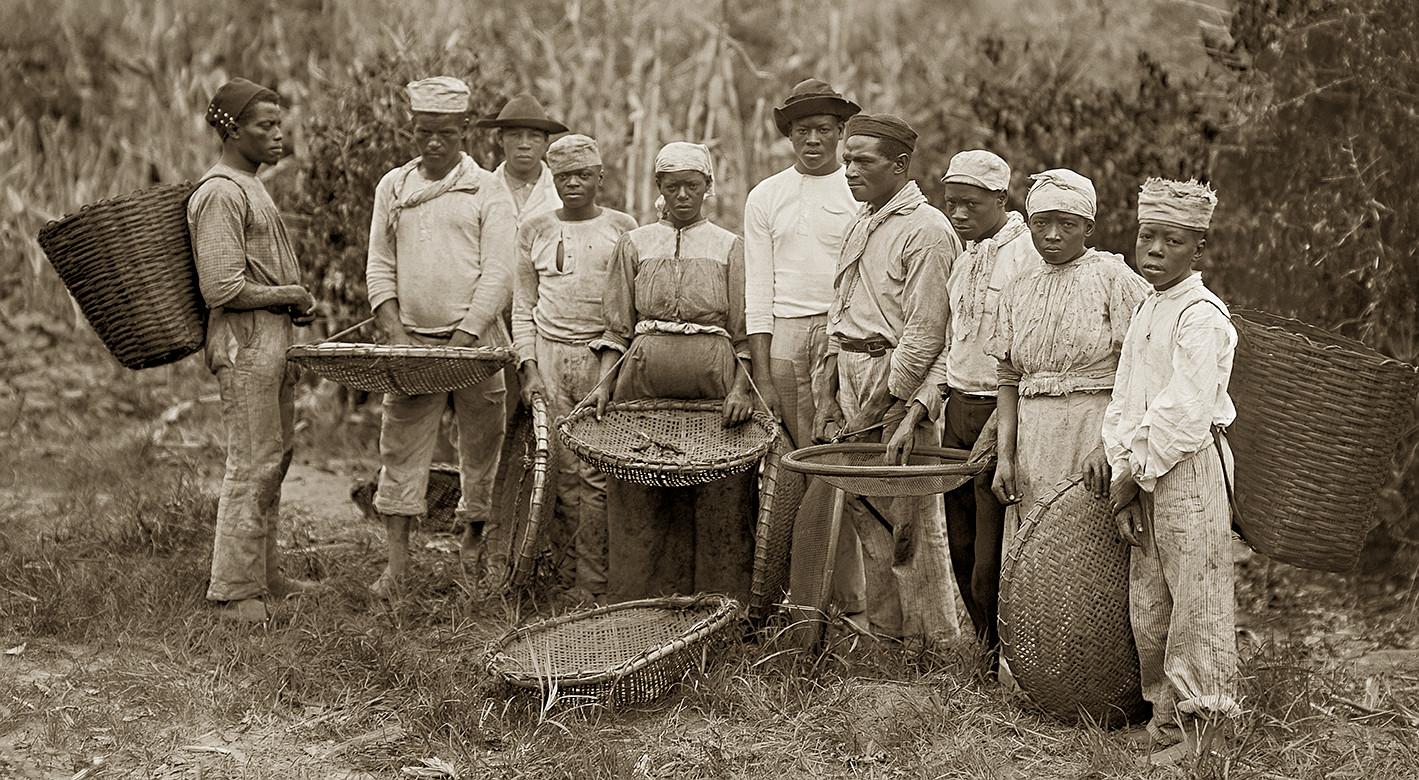 Рабский труд на кофейной плантации в Бразилии