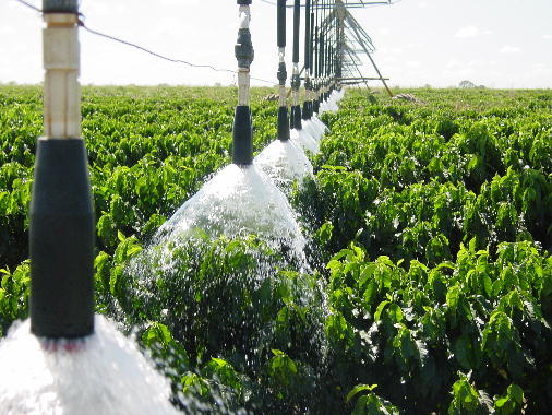 Система подачи воды для полива кофейной плантации