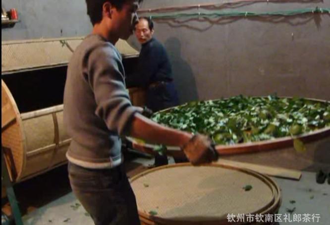 Фото процесса утряски чайных листьев