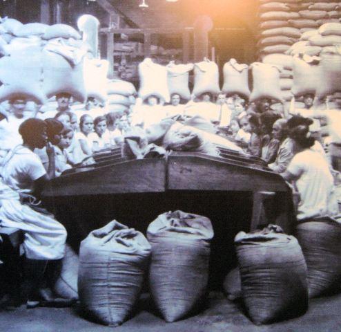 Сортировщицы кофейных зерен